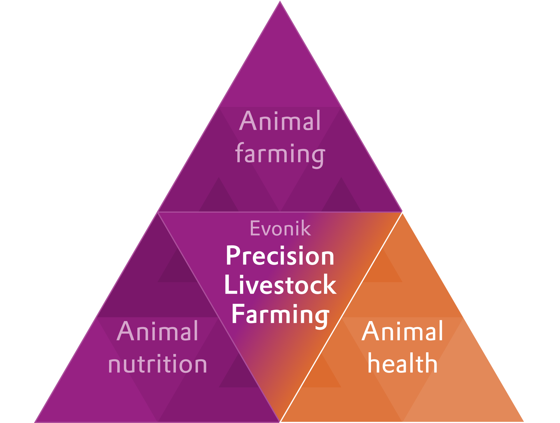 Evonik PLF helps improve animal health and growth