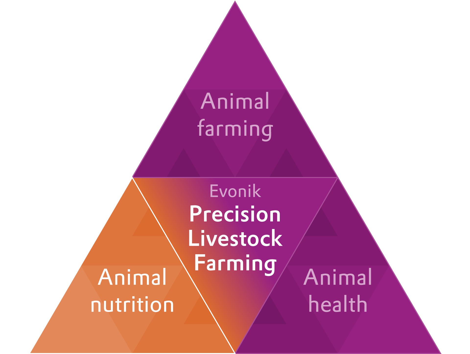 Evonik PLF drives feed quality for healthier animals